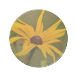 Black Eyed Susan Solitude Sandstone Coaster