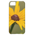 Blooming Black Eyed Susan Cover For iPhone 5C