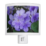 Blue Cape Primrose Night Light