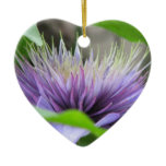 Clematis Flower Blossom Ornament