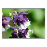 Columbine Flowers Table Number