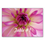 Dahlia Flowers Table Number