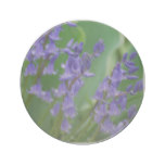 Dew on Bell Flowers Drink Coaster