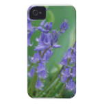 Dew on Bell Flowers iPhone 4 Cover