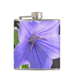 Flowering Balloon Flowers Hip Flask