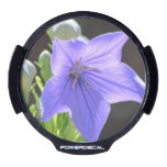 Flowering Balloon Flowers LED Car Decal