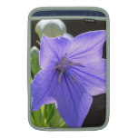 Flowering Balloon Flowers MacBook Sleeve