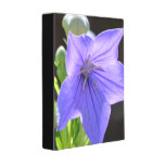 Flowering Balloon Flowers Mini Binder