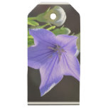 Flowering Balloon Flowers Wooden Gift Tags