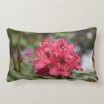 Flowering Red Rhododendron Bush in Bloom Lumbar Pillow