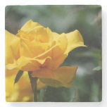 Golden Yellow Rose Bud Stone Coaster