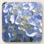Gorgeous Light Blue Flowering Hydrangea Bush Beverage Coaster