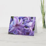 Hyacinth Flowers Greeting Card