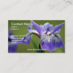 Iris Business Card