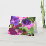 Morning Glory Vines Greeting Cards