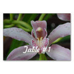 Orchid Flowers Table Number