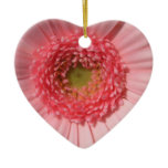 Pastel Pink Daisy  Ornament