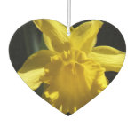 Perfect Daffodil Car Air Freshener