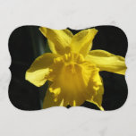 Perfect Daffodil Invitation
