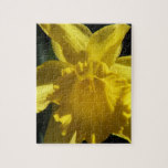 Perfect Daffodil Jigsaw Puzzle