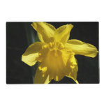 Perfect Daffodil Placemat