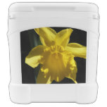 Perfect Daffodil Rolling Cooler
