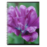 Perfectly Purple Parrot Tulip Notebook