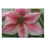 Pink Amaryllis Cloth Placemat