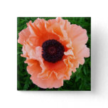 Poppy Flower Square Pin