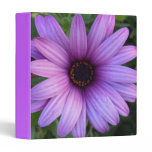 Pretty Aster Flower Binder