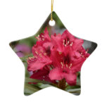 Pretty Blooming Red Rhododendron Blossom Ceramic Ornament