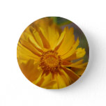 Pretty Coreopsis Flowers Button