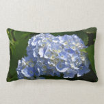 Pretty Flowering Hydrangea Flowers in Bloom Lumbar Pillow