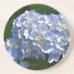 Pretty Light Blue Hydrangea Flowers Coaster