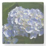 Pretty Light Blue Hydrangea Flowers Stone Coaster