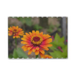 Pretty Orange Zinnia Post-it Notes