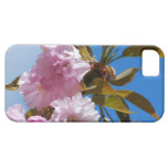 Pretty Pink Cherry Tree iPhone SE/5/5s Case