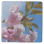 Pretty Pink Cherry Tree Stone Coaster