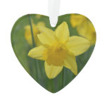 Pretty Yellow Daffodil Ornament