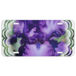 Purple Bearded Iris License Plate