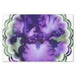 Purple Bearded Iris Tissue Paper