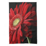 Red Gerber Daisy Kitchen Towel
