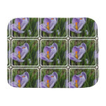Striped Crocus Baby Burp Cloth