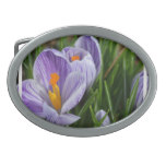 Striped Crocus Belt Buckle