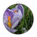 Striped Crocus Dart Board