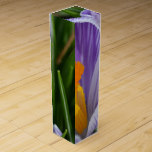 Striped Crocus Wine Gift Box