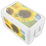 Sunflowers in Bloom Cooler