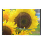 Sunflowers in Bloom iPad Air Case