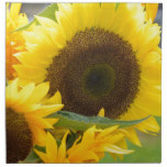 Sunflowers in Bloom Napkin